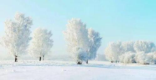 关于冬诗句