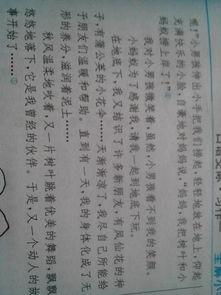 大红寨作文200字