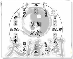 十二地支的阴阳属性(十二地支与阴阳及五行的关系)