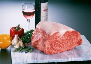 上海冻肉报关流程乌拉圭牛肉清关进口牛肉报关