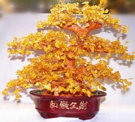 招财树的风水如何摆放(招财风水发财树怎么养才能增加财运)