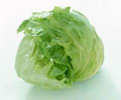 可以避免人类罹患肠癌 细数常吃圆白菜的七大好处