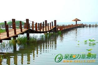 上海周边一日游 上海一日游推荐