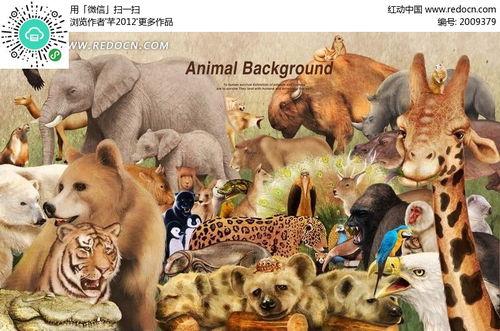 卡通动物世界草原野生动物集合图片