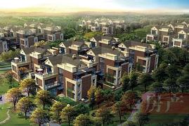 中粮 祥云国际500平大宅在售 最低24000元 平