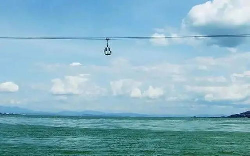 女子自杀,从缆车上坠入滇池身亡,索道公司是否要承担赔偿