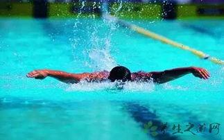 游泳怎么学踩水