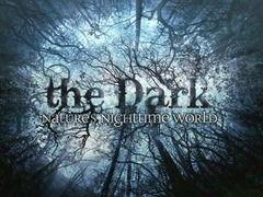 世界的黑暗语录