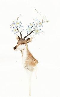 手绘唯美鹿插画