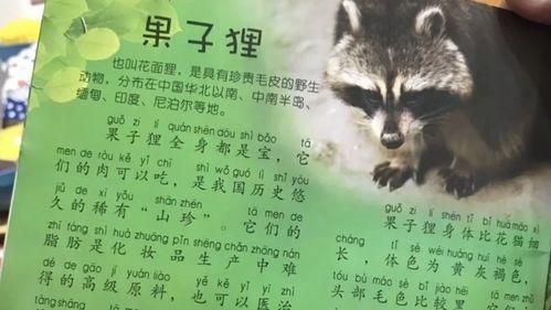 新政策!武汉市人民政府发布:武汉禁食野生动