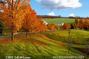 美丽乡村秋天自然风光摄影高清图片