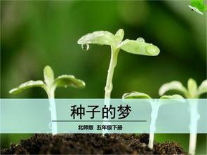描写播种种子的句子