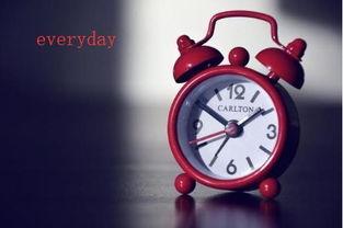 每天 的英语单词怎么写