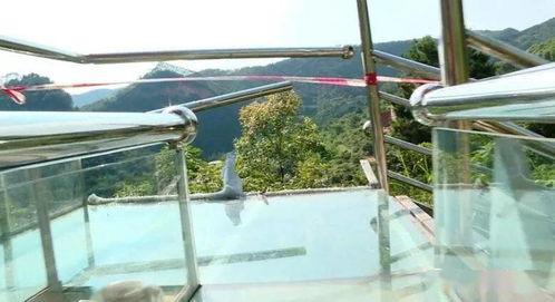 1死6伤景区网红玻璃滑道再出事滑道有多危险你知道吗