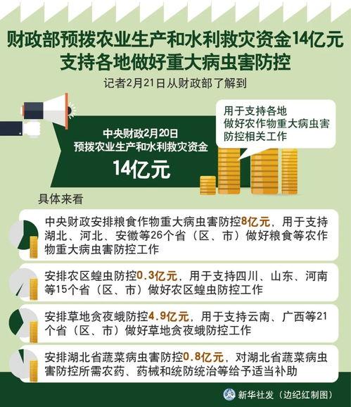 7)受新冠肺炎疫情影响,2020东京奥运会女足亚洲区预选赛附加赛中国女足的