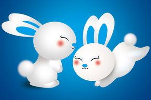 2013属兔巨蟹座的爱情运势(属兔的巨蟹座今日运势)