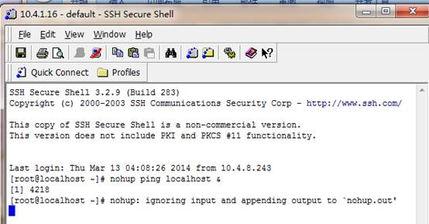 Linux nohup命令应用简介 让Linux的进程不受终端影响