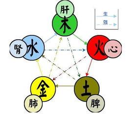 正八卦与人体器官与五行是如何对应,如何推断(•怎么摆五行八卦图)