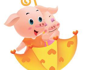 生肖猪五行属什么,属猪的五行(1971年出生的猪五行属什么)