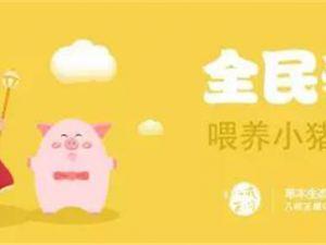 全民养猪是真给钱吗(养猪一年能赚多少钱)