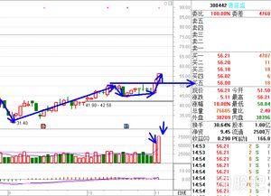 单股股票分析报告