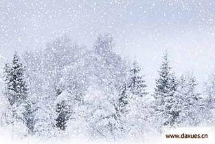 感受雪的诗歌,看长白山入秋第一场雪