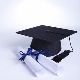 南方电网主要招哪些大学的毕业生 大学教育