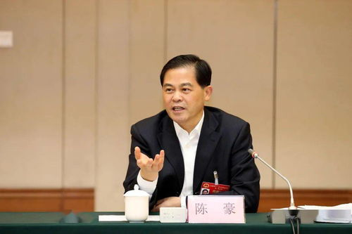 陈豪参加昭通市代表团审议审查时强调交出高质量脱贫答卷,奋力促进滇东北崛起
