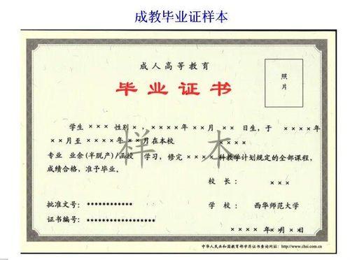 广东省自考学哪个专业好