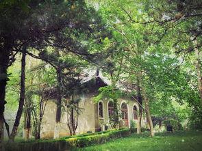 南京 大学