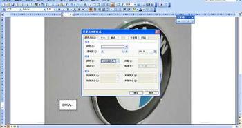 OFFICE WORD2003编辑图片 在图上添加文字