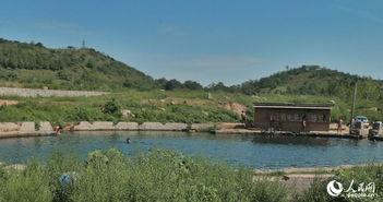 京郊现天体浴场 五十人路边水塘裸泳