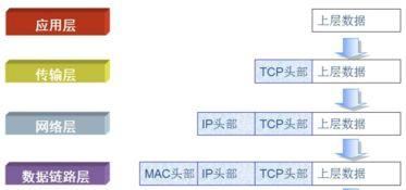 ip网络基础知识