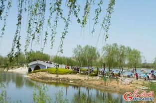 北京南海子郊野公园 中国网客户端