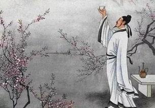 刘禹锡关于明月的诗句