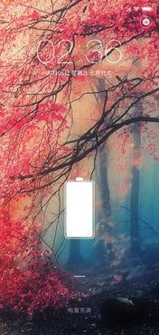香榭的落叶