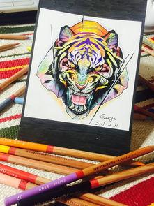 彩铅手绘tattoo 虎