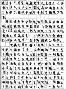 运动会作文300字初中作文