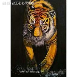 今天手绘了一只 老虎 手绘彩铅画 彩铅手绘动物 系列开 王心心爱手绘的美拍