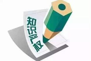 中国知识产权查询