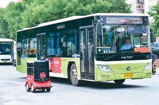 配送机器人和公交车,