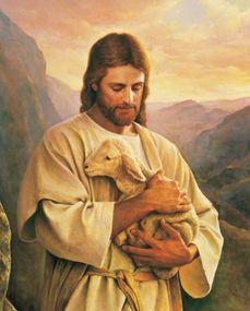 信耶稣能批八字吗
