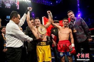 邹市明年底或战日本拳王 第二次冲击世界金腰带