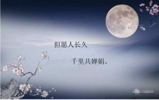 关于月亮的中秋节诗句古诗