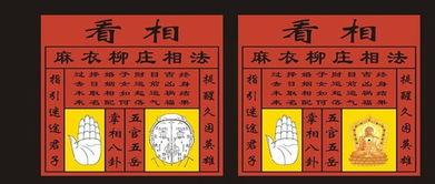 上海哪里有学习八字命理的地方(怎样学占卜)