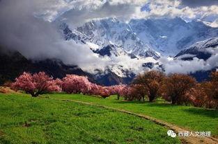 林芝三日记 从西藏流放地到世界桃花源