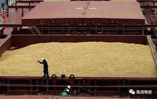 中国企业大量买进美国大豆,但本已饱和的市场恐难消化