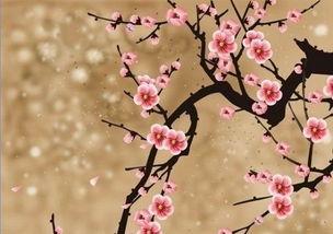 描写春天桑树优美句子