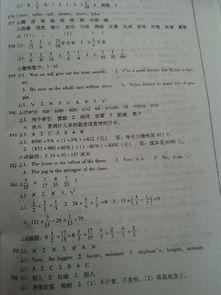 小学生寒假作业答案txt