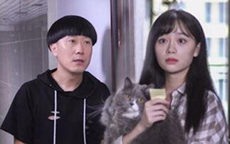 《陈翔六点半》第119集单身狗巧用猫咪换取美女芳心